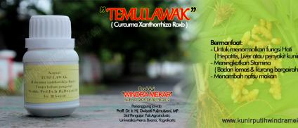 Temulawak – TL30