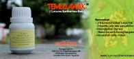 Temulawak – TL60